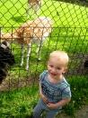 KDV-hertenkamp-kinderboerderij-001