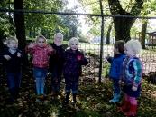 KDV-hertenkamp-kinderboerderij-002